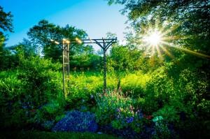 Garten, Natur